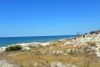 Kuršių Nerijos paplūdimiai ir kopos - 3