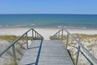 Kuršių Nerijos paplūdimiai ir kopos - 4