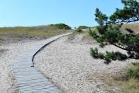 Kuršių Nerijos paplūdimiai ir kopos - 7