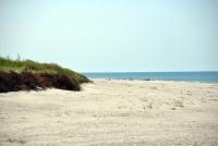 Kuršių Nerijos paplūdimiai ir kopos - 8
