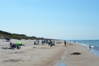 Kuršių Nerijos paplūdimiai ir kopos - 10