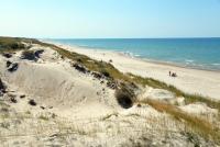 Kuršių Nerijos paplūdimiai ir kopos - 18