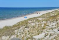 Kuršių Nerijos paplūdimiai ir kopos - 19