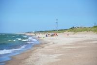 Kuršių Nerijos paplūdimiai ir kopos - 22