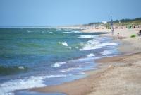 Kuršių Nerijos paplūdimiai ir kopos - 23