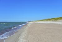Kuršių Nerijos paplūdimiai ir kopos - 24