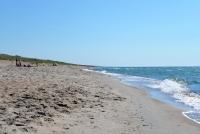 Kuršių Nerijos paplūdimiai ir kopos - 25