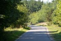 Dviračių takas pajūryje Šventoji - Palanga - Karklė - 16