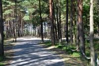 Dviračių takas pajūryje Šventoji - Palanga - Karklė - 32