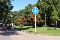 Dviračių takas pajūryje Šventoji - Palanga - Karklė - 42