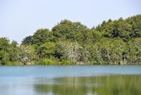 Plazės ežeras - 59