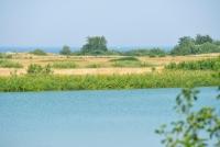 Plazės ežeras - 60