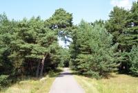 Dviračių takas pajūryje Šventoji - Palanga - Karklė - 64
