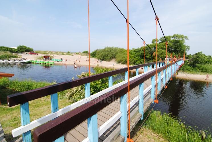 Beždžionių tiltas