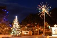 Šv.Kalėdų eglutė Nidoje, Juodkrantėje - 2