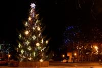 Ziemassvētku eglīte Nidā, Juodkrante - 5