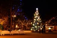 Šv.Kalėdų eglutė Nidoje, Juodkrantėje - 6
