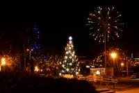 Šv.Kalėdų eglutė Nidoje, Juodkrantėje - 7
