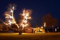 Ziemassvētku eglīte Nidā, Juodkrante - 19