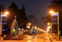 Christmas tree in Palanga and Šventoji - 13