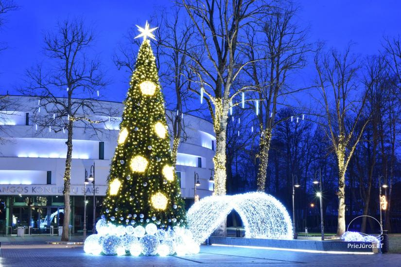 Christmas tree in Palanga and Šventoji