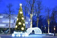 Christmas tree in Palanga and Šventoji - 1