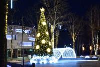 Christmas tree in Palanga and Šventoji - 2