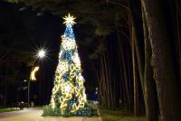 Christmas tree in Palanga and Šventoji - 62