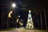Christmas tree in Palanga and Šventoji - 63
