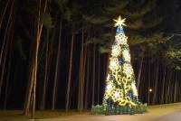 Christmas tree in Palanga and Šventoji - 65