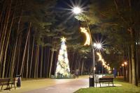 Christmas tree in Palanga and Šventoji - 66