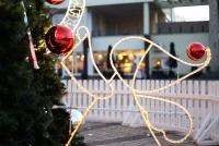 Christmas tree in Palanga and Šventoji - 20