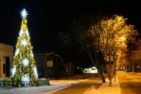 Christmas tree in Palanga and Šventoji - 69