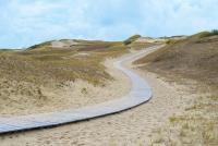 Naglių gamtinis rezervatas, pažintinis takas - 3