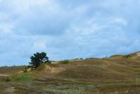 Naglių gamtinis rezervatas, pažintinis takas - 4