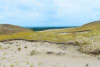 Naglių gamtinis rezervatas, pažintinis takas - 12
