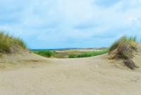 Naglių gamtinis rezervatas, pažintinis takas - 15