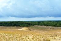 Naglių gamtinis rezervatas, pažintinis takas - 18