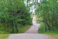 Naglių gamtinis rezervatas, pažintinis takas - 22