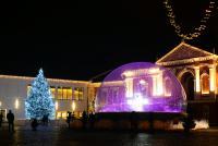 Šv. Kalėdų eglė Klaipėdoje - 3