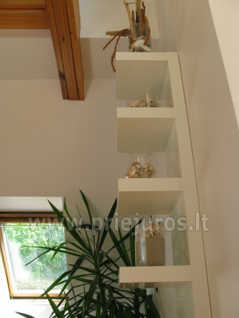 Luxury apartment in the Curonian Spit - 5