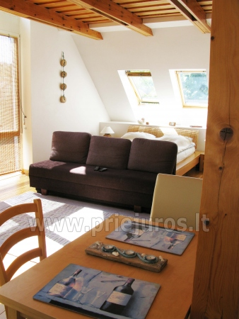 Luxury apartment in the Curonian Spit - 3