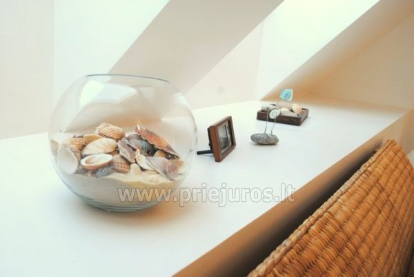 Luxury apartment in the Curonian Spit - 1