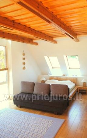 Luxury apartment in the Curonian Spit - 2
