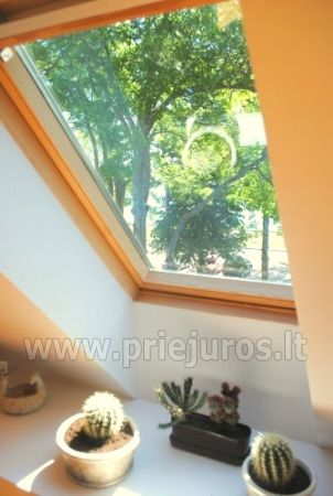 Luxury apartment in the Curonian Spit - 6