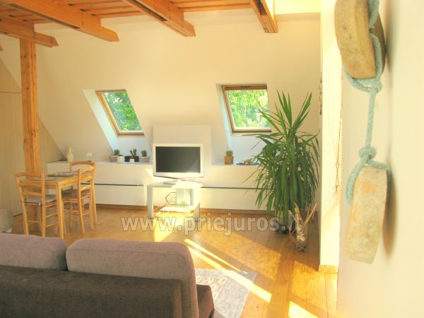 Luxury apartment in the Curonian Spit - 4