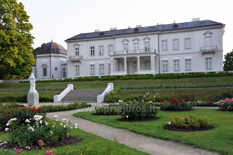 Palanga Botanical Park, Amber museum (Lithuania) - 10