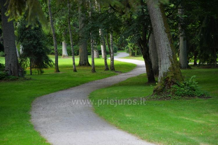 Palanga Botanical Park, Amber museum (Lithuania) - 17