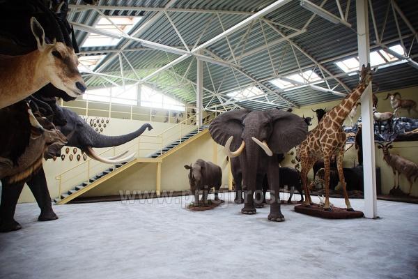 Mini Zoo, safari in Klaipeda Bezirk in Hotel Gamtos Perlas *** - 3