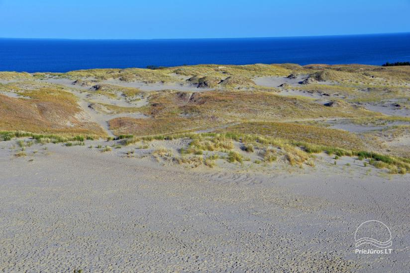Death valley in Nida, Curonian spit - 3